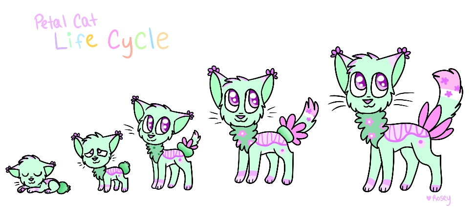 Petal Cat Life Cycle By Roseywingedcat On Deviantart