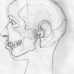 Inside Skull Diagram Kidde Smoke Detector Wiring Female Head By Mrpurplebackpackman On Deviantart