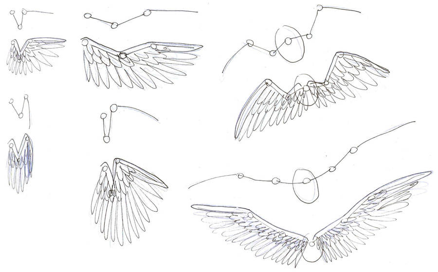 How I draw Wings by addictedtopunk on DeviantArt