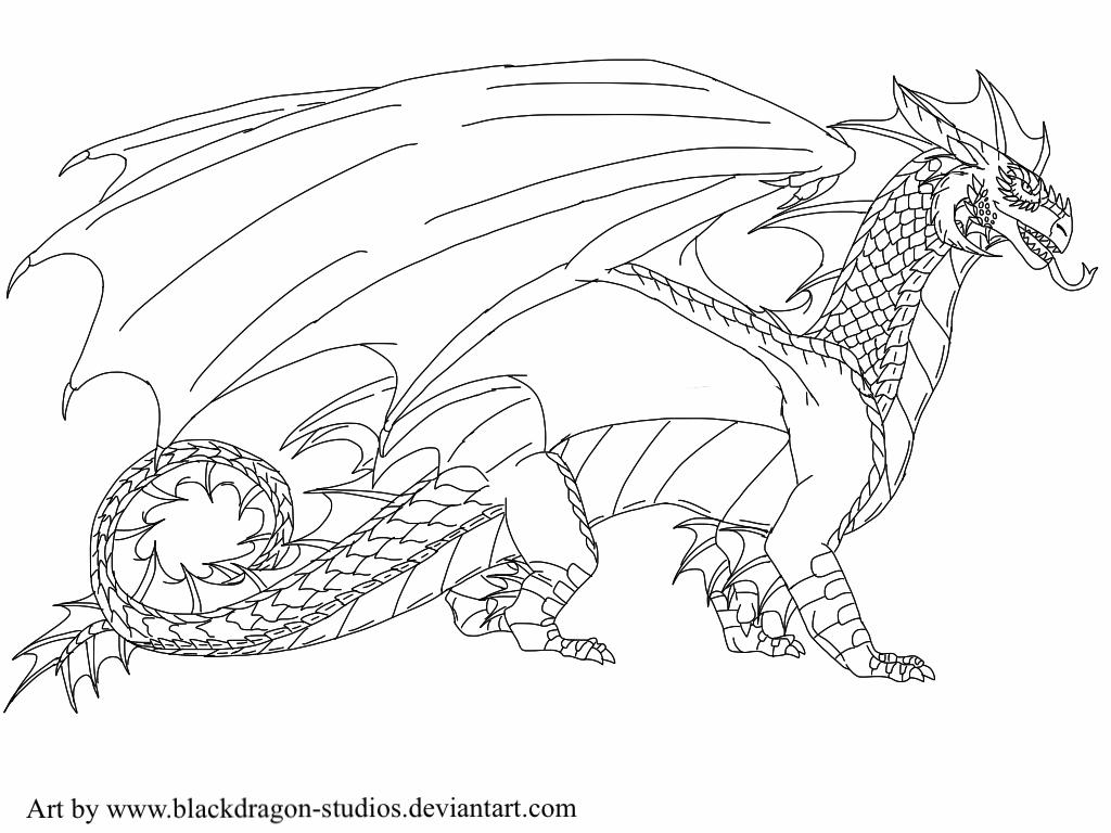 Wings Of Fire Stormwing Tribe Lineart By Blackdragon