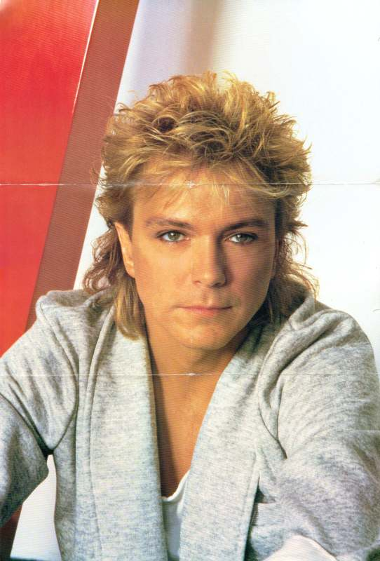 45cat David Cassidy The Last Kiss The Letter