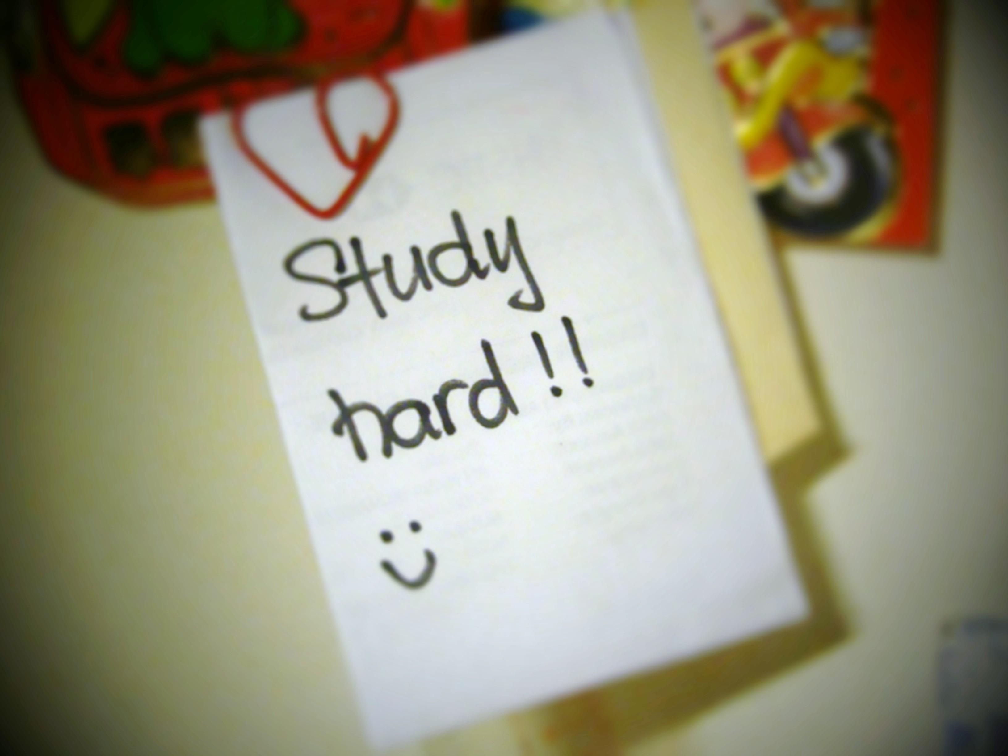 study-hard-3324.jpg (1024×1024)