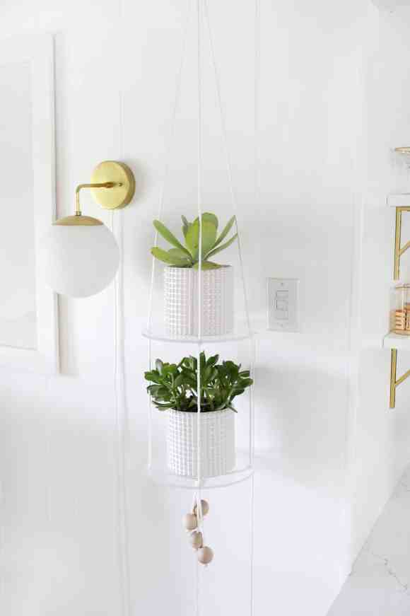 hanging indoor plant ideas and DIY projects