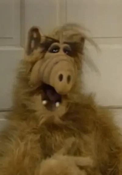 Watch Alf S01E01  ALF TV Series Free Online  Tubi