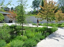 Gallery of Brooklyn Botanic Garden Visitor Center / Weiss ...