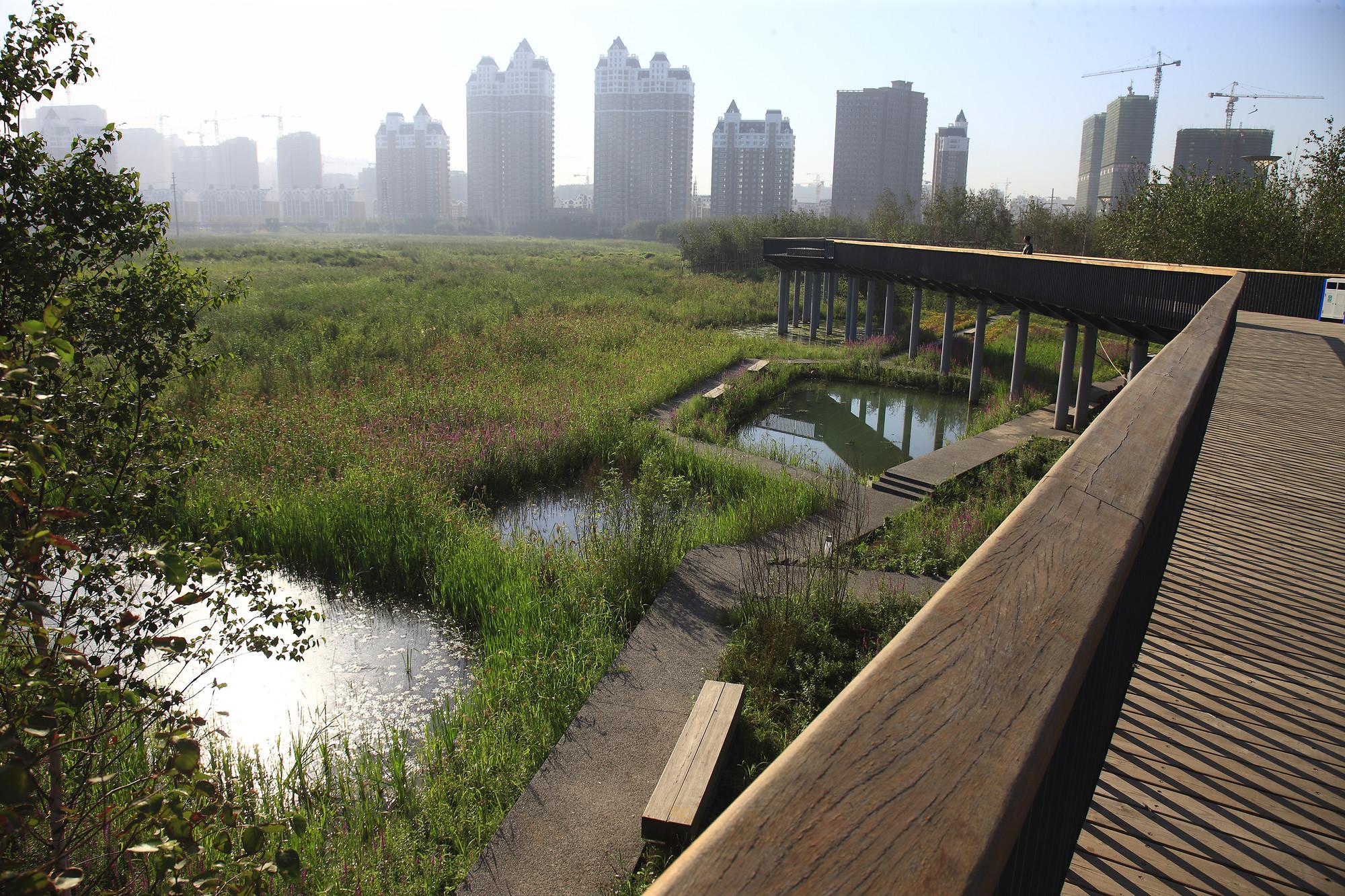 qunli stormwater wetland park