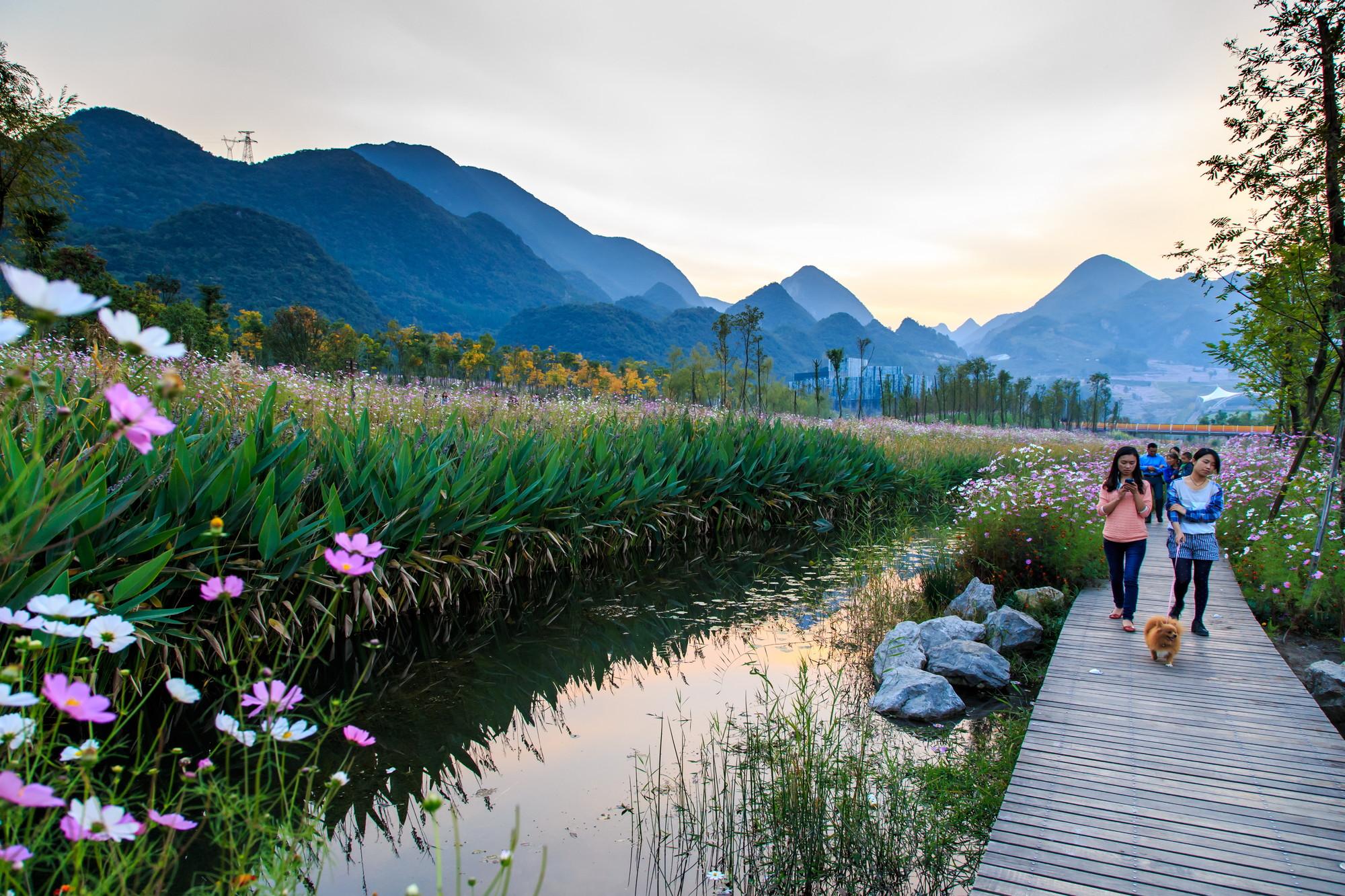 Gallery of Minghu Wetland Park  Turenscape  14