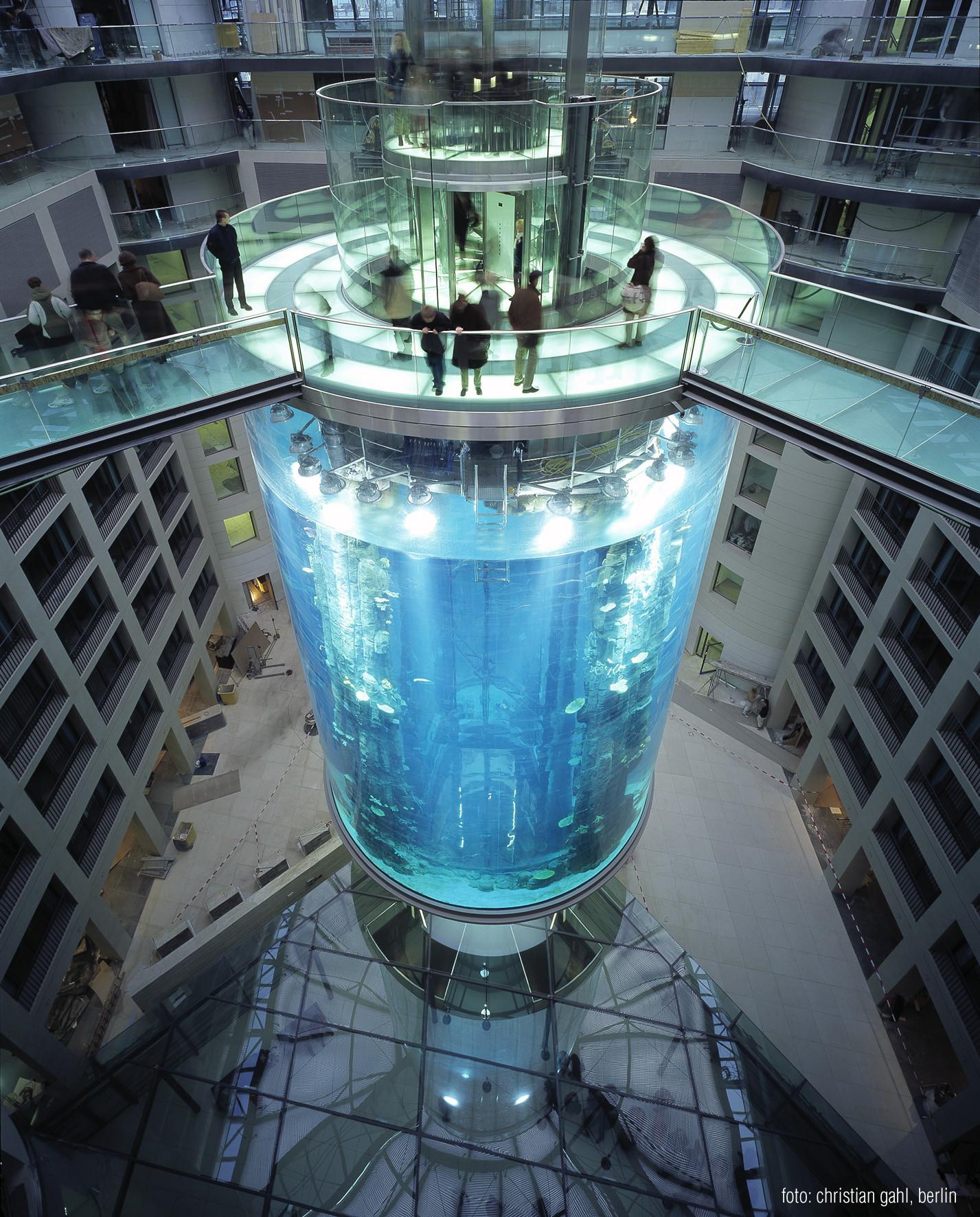 Largest Berlin Aquarium in the World