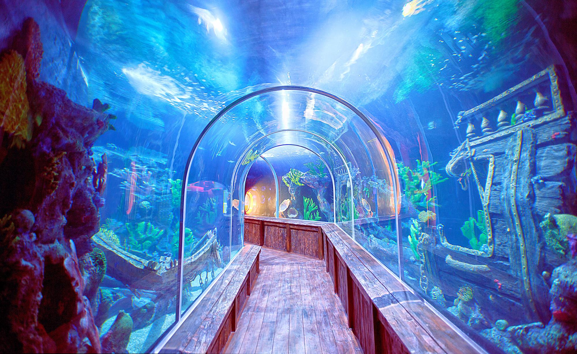 Santo Domingo Aquarium