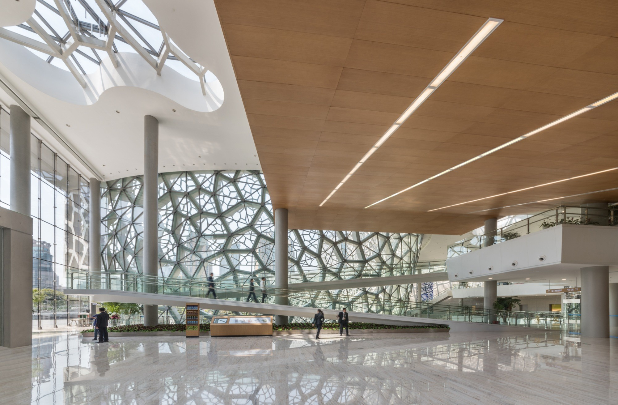 Shanghai Natural History Museum Perkins Archdaily