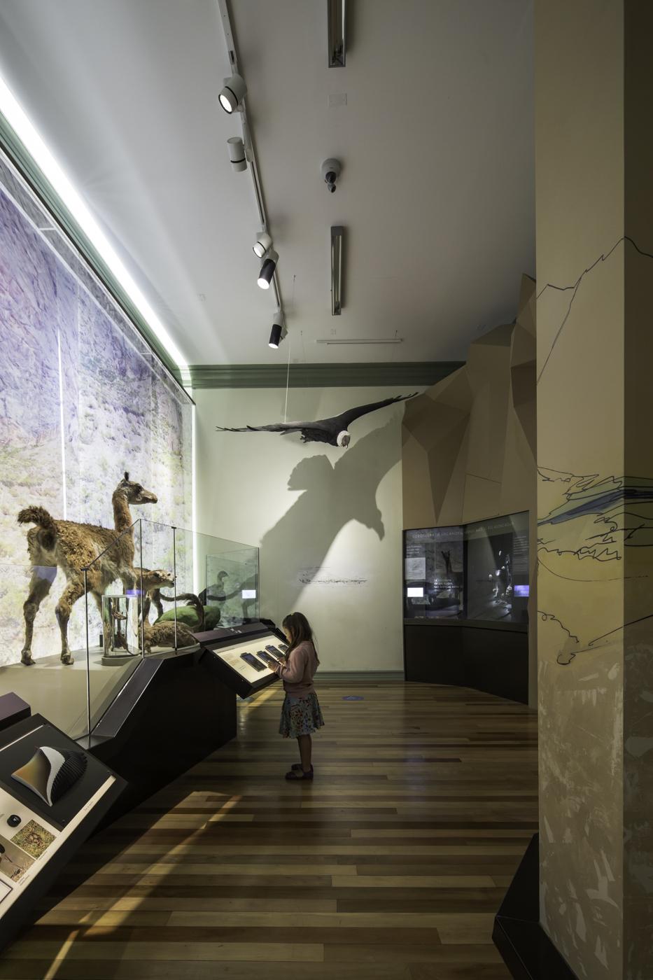 Museografa Museo de Historia Natural Valparaso  SUMO