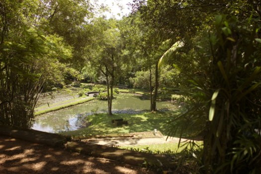 The gardens at Lunuganga. Image © <a href='https://commons.wikimedia.org/wiki/File:Lunuganga,_Bentota,_Sri_Lanka..JPG'>Wkimedia user Labeet</a> licensed under <a href='https://creativecommons.org/licenses/by-sa/3.0/deed.en'>CC BY-SA 3.0</a>