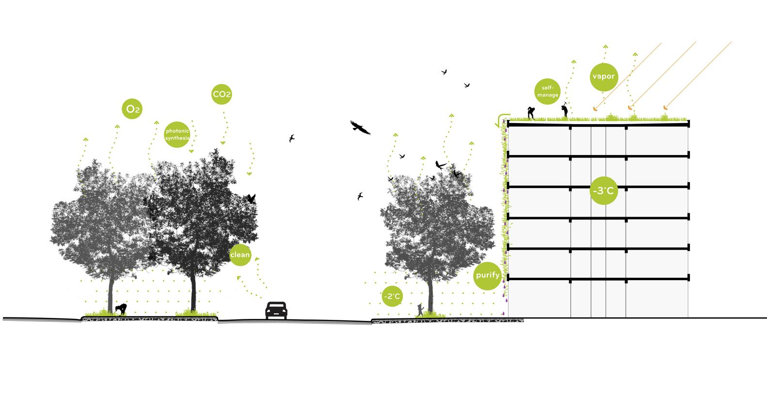 small resolution of green river brateevo okra landscape architects green diagram