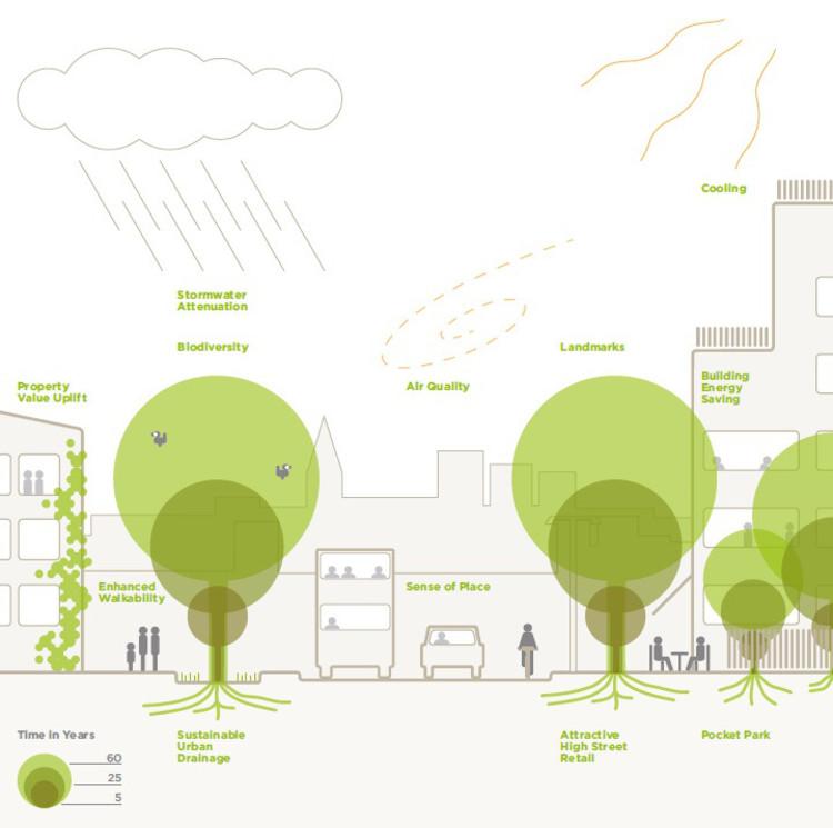 Árvores na paisagem urbana - um guia para os planejadores e autoridades, via www.tdag.org.uk