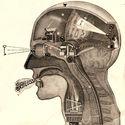 "Fritz Kahn: Man Machine (Edited, 2009). Image Cortesia de ""Are We Human"" / 3. Istanbul Tasarim Bienali"