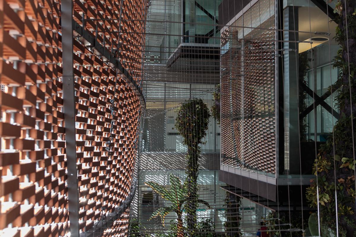 Galera de Fundacin Santa Fe de Bogot  El Equipo de