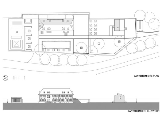 Site Plan and Elevation