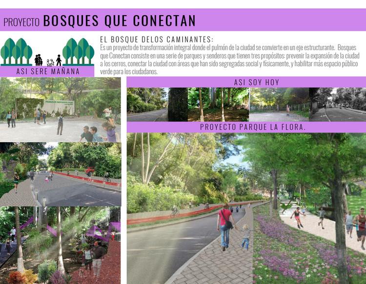 Espacio público, la piel de la democracia / Lámina 02. Image Cortesía de Taller de Arquitectura de Bucaramanga