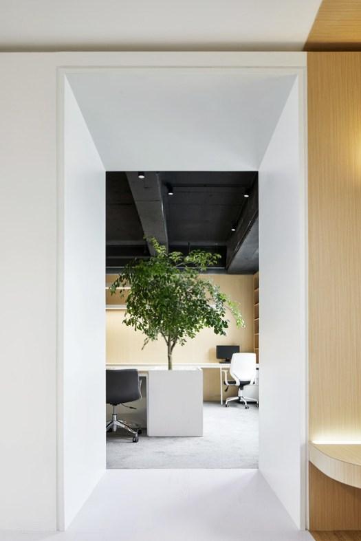 An unexpected indoor scene. Image © Daqi Zhang
