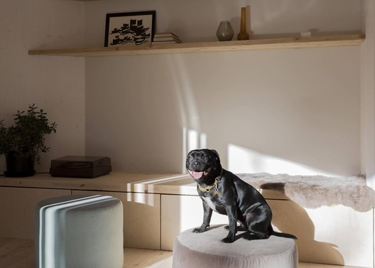 009_Marc_Goodwin_ORTRAUM_MK5_dog Architecture Photos That Show Good Design Goes with Good Boys Architecture