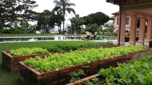 Residência Alto Humaitá (RJ). Image Cortesia de Burle Marx Paisagismo