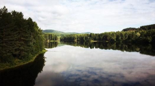 Countryside inspiration by river Ångermanälven in Sollefteå, Sweden. Image Courtesy of Urban Nouveau