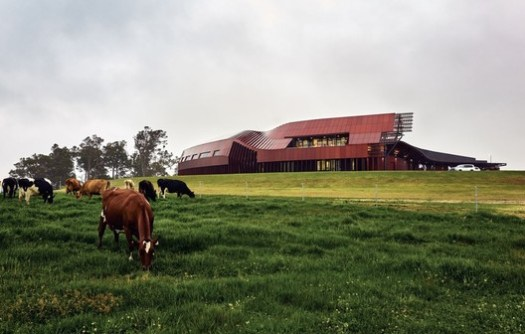 The Creamery, Bannister Downs Dairy. Image © Peter Bennetts