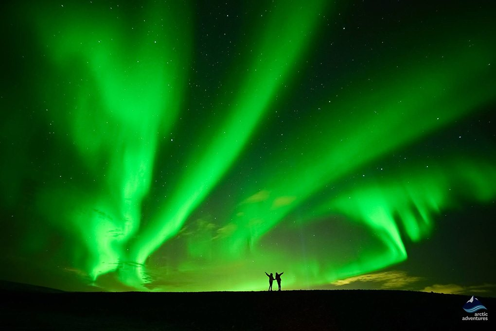 Whale Watching  Northern Lights in North of Iceland