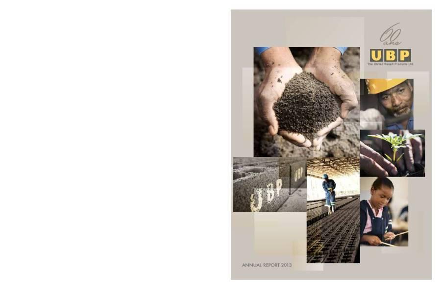 The United Basalt Products Ltd (UBP.mu) 2013 Annual Report ...