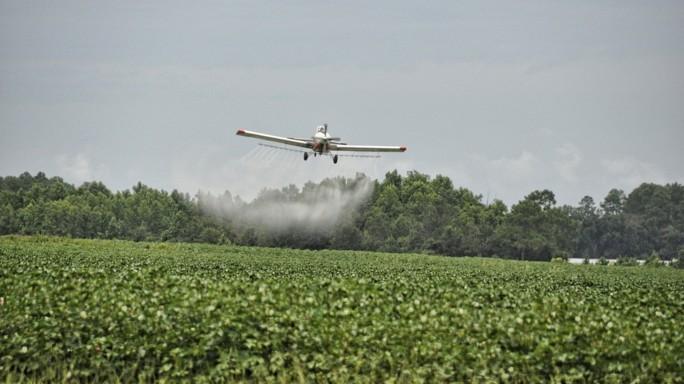 Monsanto Papers: i documenti che mettono sotto accusa la multinazionale americana