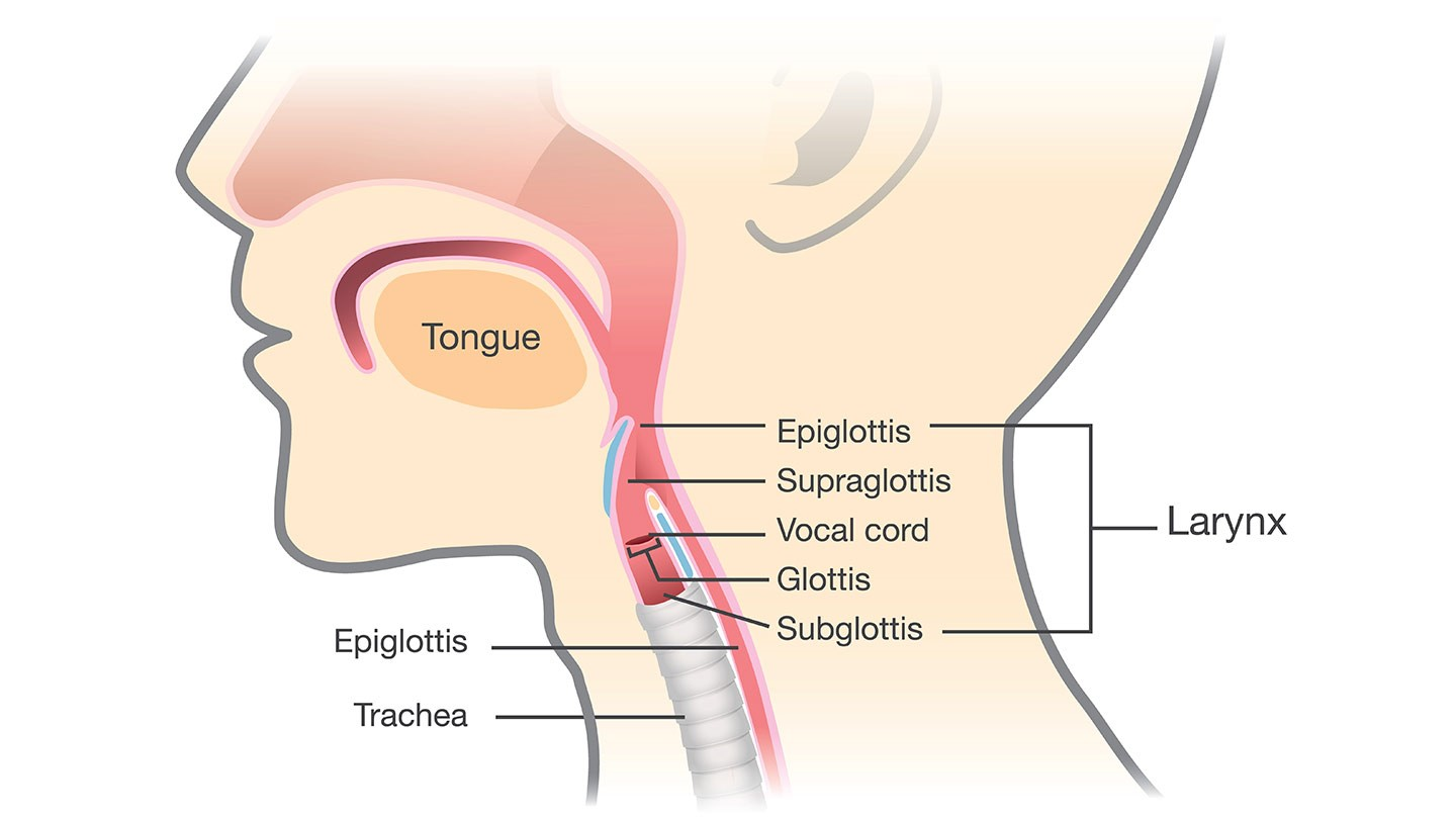 hight resolution of artificial voice box implant helps cancer patient speak