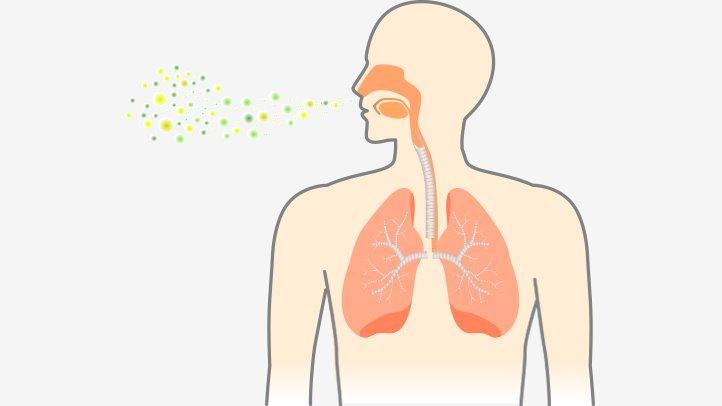 Pneumonia Symptoms and Causes   Everyday Health