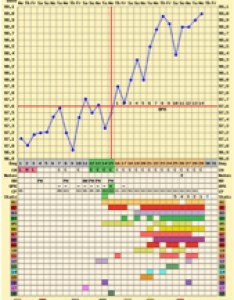 attached last cycles triphasic chart and this my bfp as well an overlay hope they help you  bit the pink is cycle also implantation dip trying to conceive forums rh whattoexpect