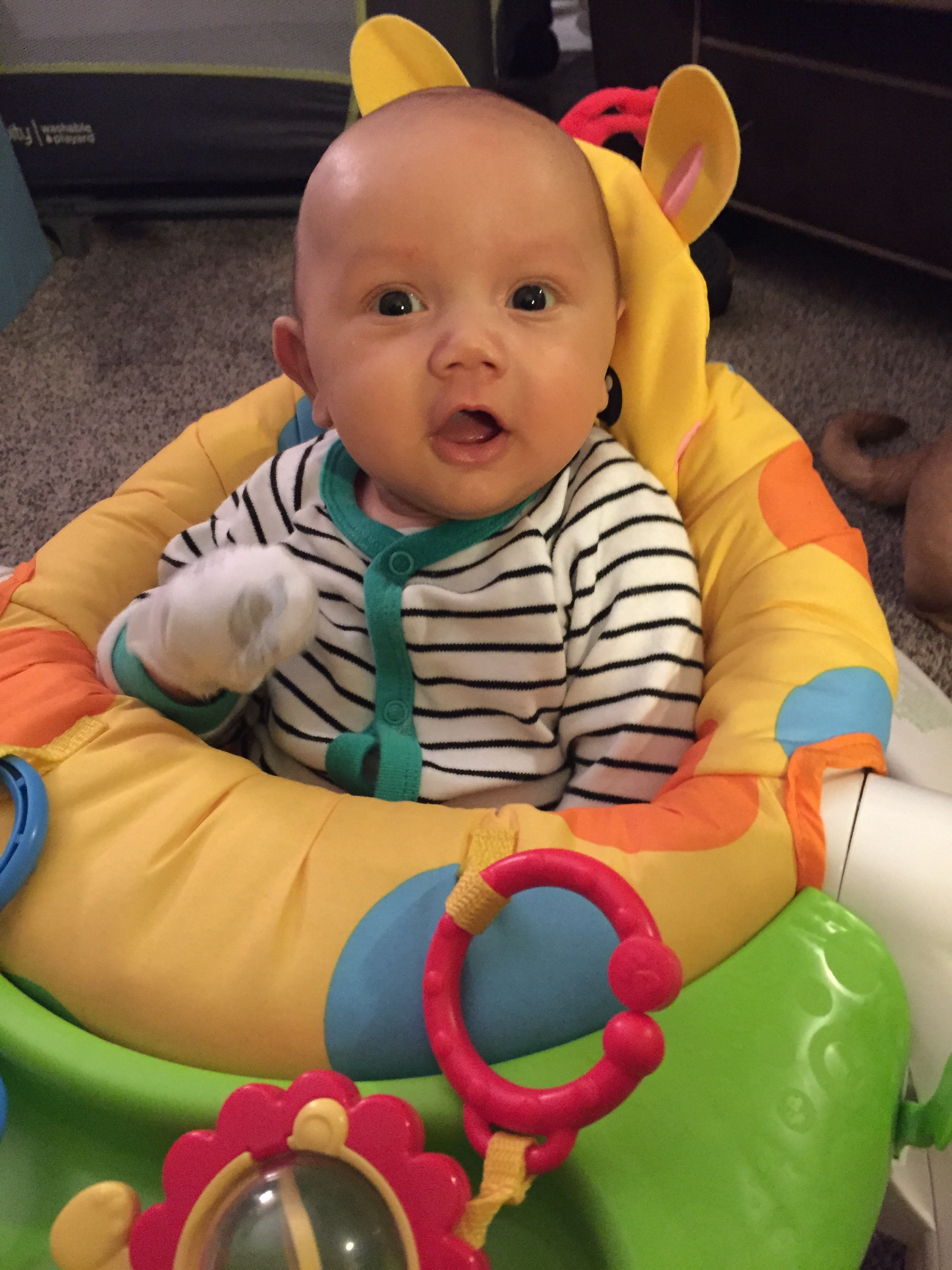 fisher price sit and play chair bloom high me up january 2015 babies forums what to expect about 2 3 weeks he absolutely loves it because is always wanting like a big boy we don t keep him in for long but still has blast