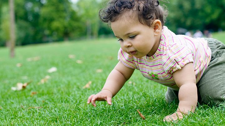 crawling when do babies