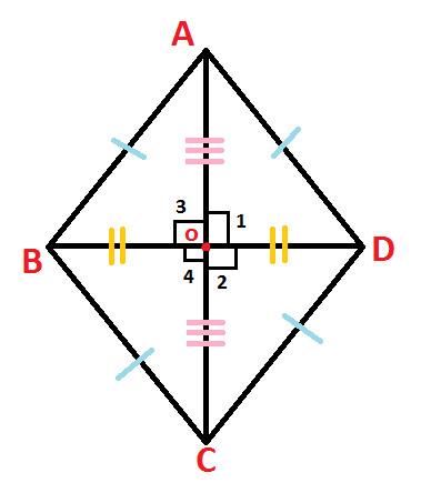 Rhombus at Algebra Den