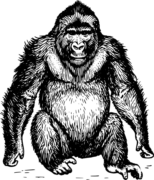 Ape Clip Art Free Vector In Open Office Drawing Svg Svg