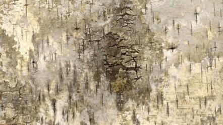 background grunge texture bark scrapbook backgrounds resolution 55mb outdoor hd domain craft format pixels publicdomainpictures
