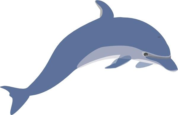 dolphin clip art free vector
