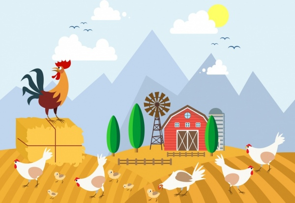 Chicken Free Vector Download 424 Free Vector For