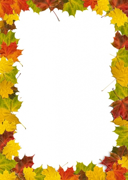 Leaves border free stock photos download 4245 Free stock