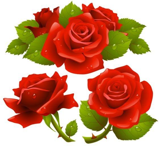 Free Rose Flower Vector Free Vector In Encapsulated PostScript Eps Eps Vector Illustration