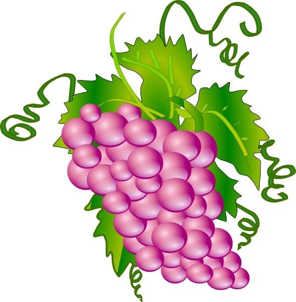 grapes clip art free vector
