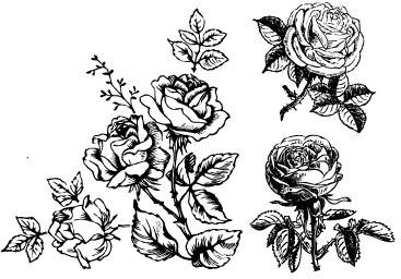 Hand draw flower vector Free vector in Coreldraw cdr