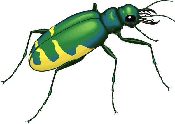 insect 22 free vector in open office