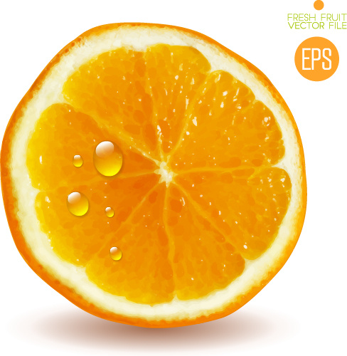Orange Slice Free Vector Download 2 417 Free Vector For