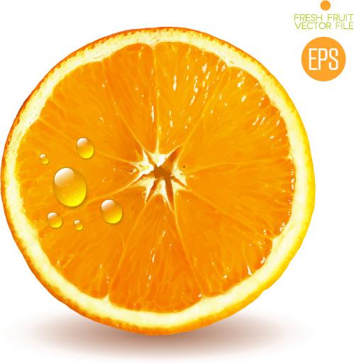 Half Fire Half Water Car Wallpapers Orange Slice Free Vector Download 2 417 Free Vector For