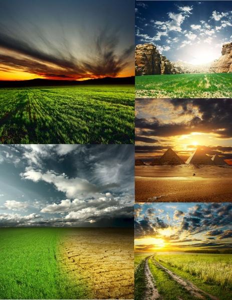 Download Natural Images  Impremedianet