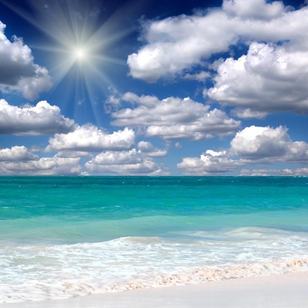 beach landscape free stock