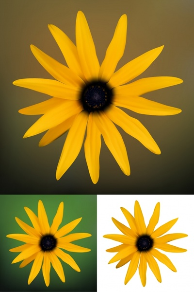 Daisy free vector download 182 Free vector for commercial use format ai eps cdr svg